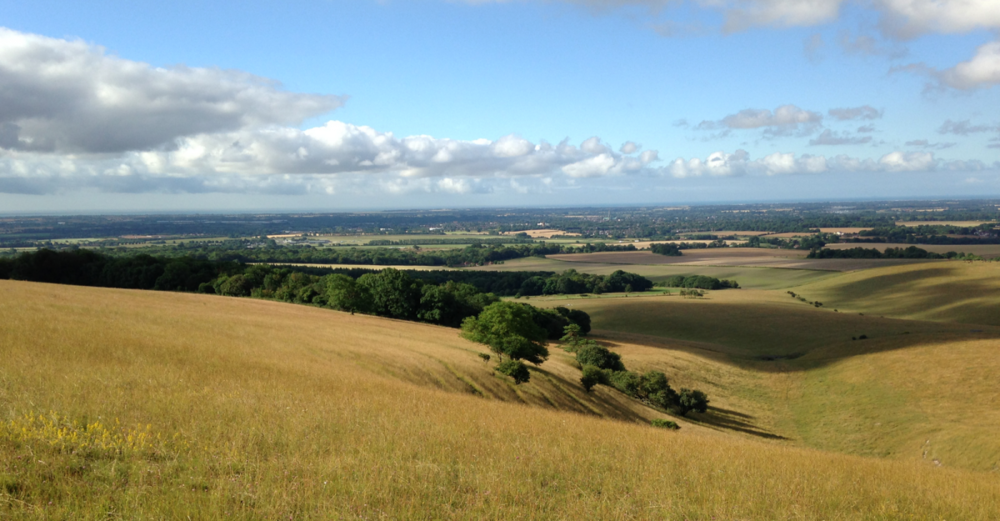 View of The South Downs, Sussex: The perfect place for like minds to discuss life, love and the universe